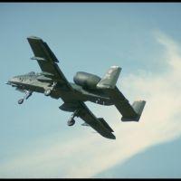 A-10 Thanderbolt (Авиа)