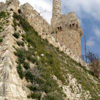 RadioSon Радио Река Израиль Reka Radio Israil разговорное