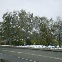 Неожиданная зима в Москве 15 октября 2007