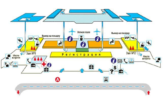 Схема стоек в аэропорту домодедово