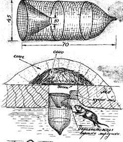 устройство морды для ловли рыбы