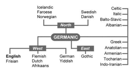 English is a member of the Germanic family of languages
