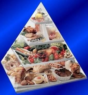 Понятие лечебного питания диеты реферат
