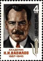 Портрет Н. И. Вавилова