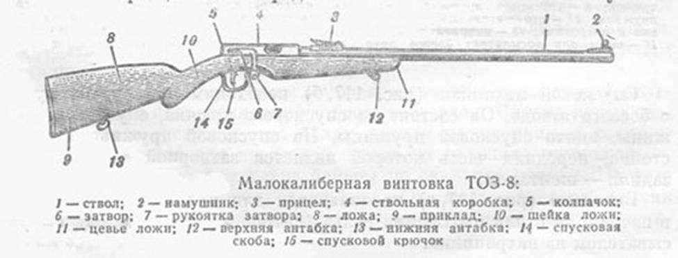 Винтовка ТОЗ-8 состоит из ствола, ствольной коробки, спускового механизма, прицела, мушки с намушиком...