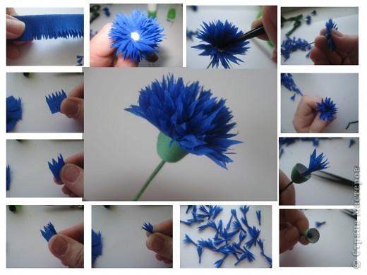 Как сделать василек из бумаги своими руками поэтапно