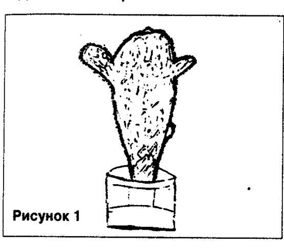 Как нарисовать кактус психология