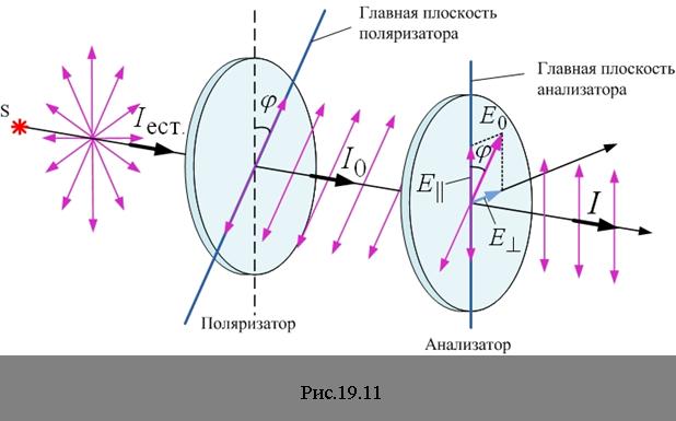 Свет проходя через поляризатор попадает в электрическое поле