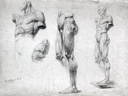 академический рисунок учебник