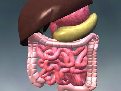 кишечные паразиты у человека лечение