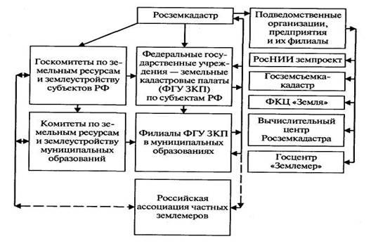 государственный земельный кадастр структура