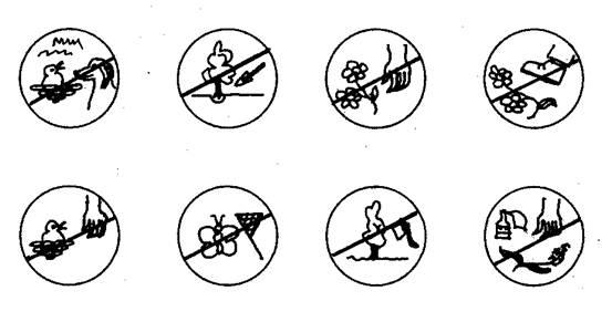Правила поведения в лесу раскраска
