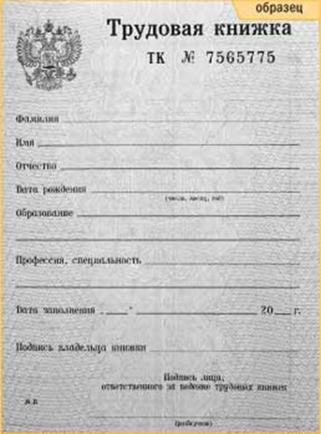 Трудовая книжка Контент-платформа Pandia.ru