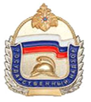 Гу мчс вао руководство русаковская 26