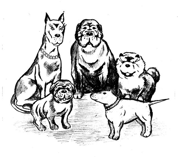 породистые псы.tif