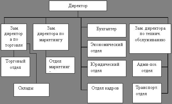 Схема структуры коммерческих организаций