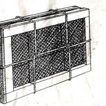 image001_285 Как оформить гербарий
