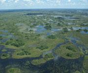 Необычные реки мира - Реки, которые никуда не впадают - Окаванго