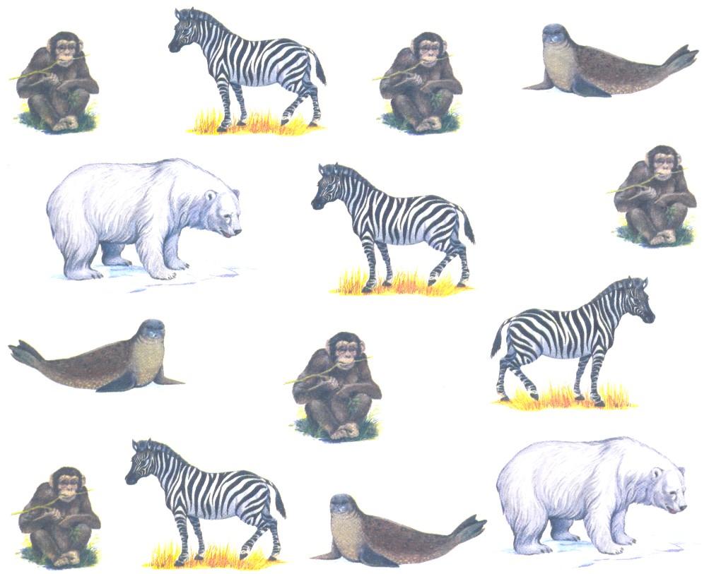 которых картинки животные севера и животные жарких страница комитета
