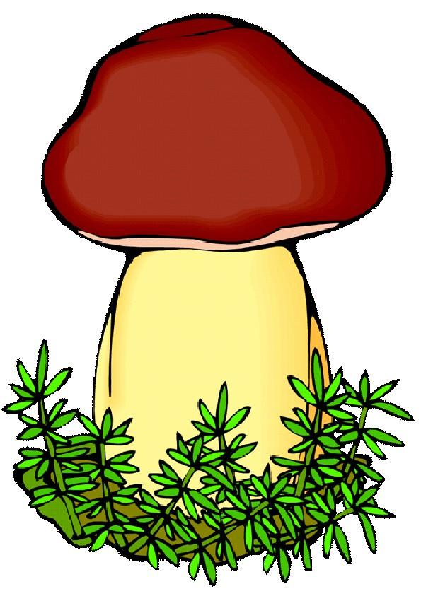 картинка гриба боровика для презентации переименован загорск